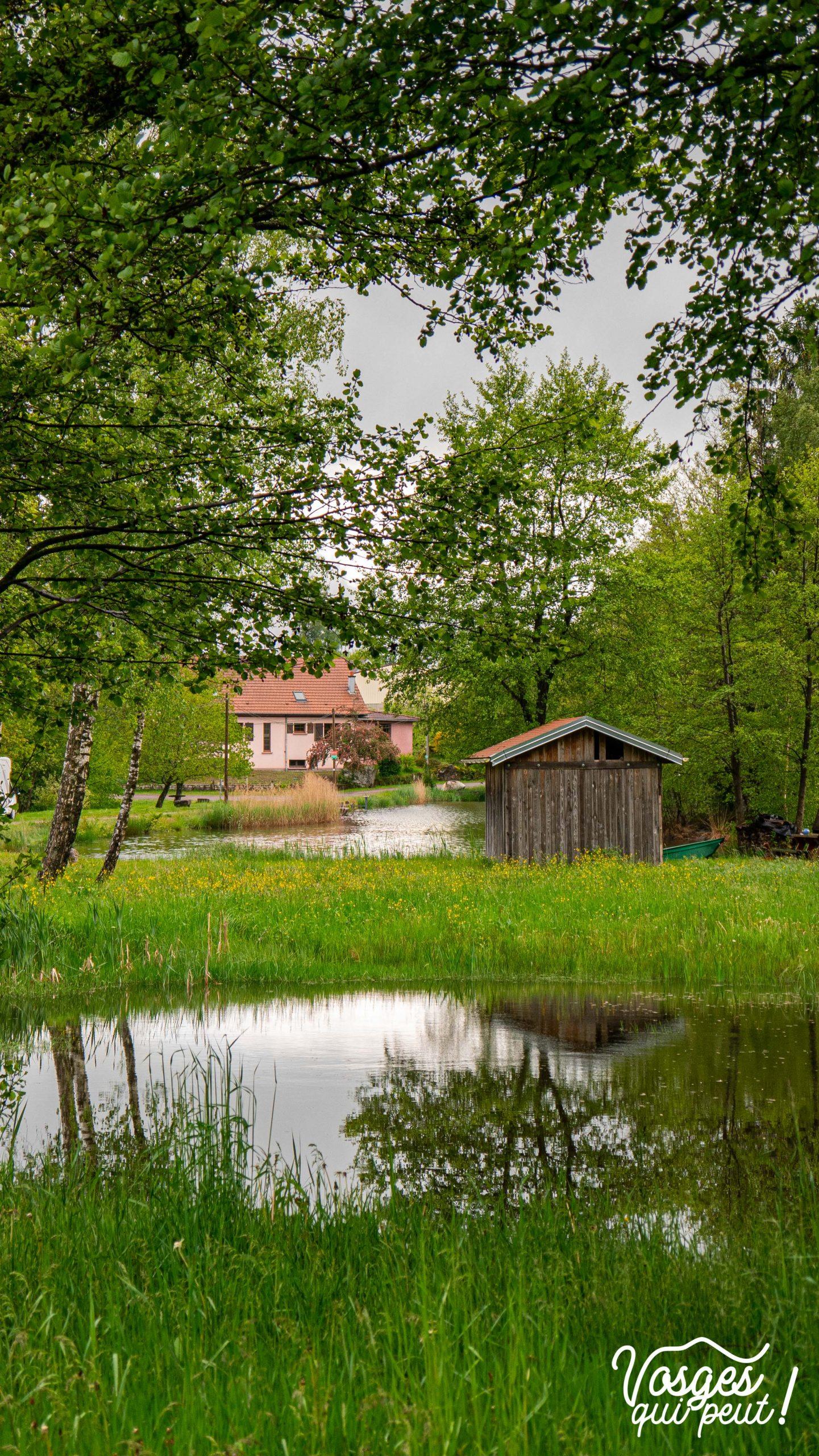 L'étang Pellevin à côté d'Écromagny au plateau des mille étangs