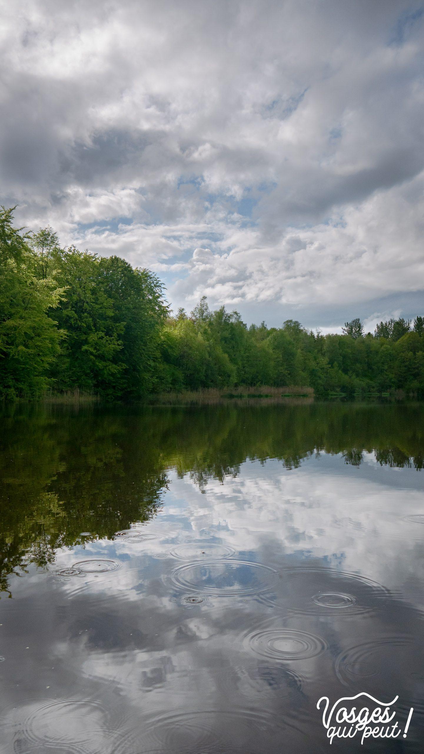 L'étang de la Dame à Écromagny au plateau des mille étangs