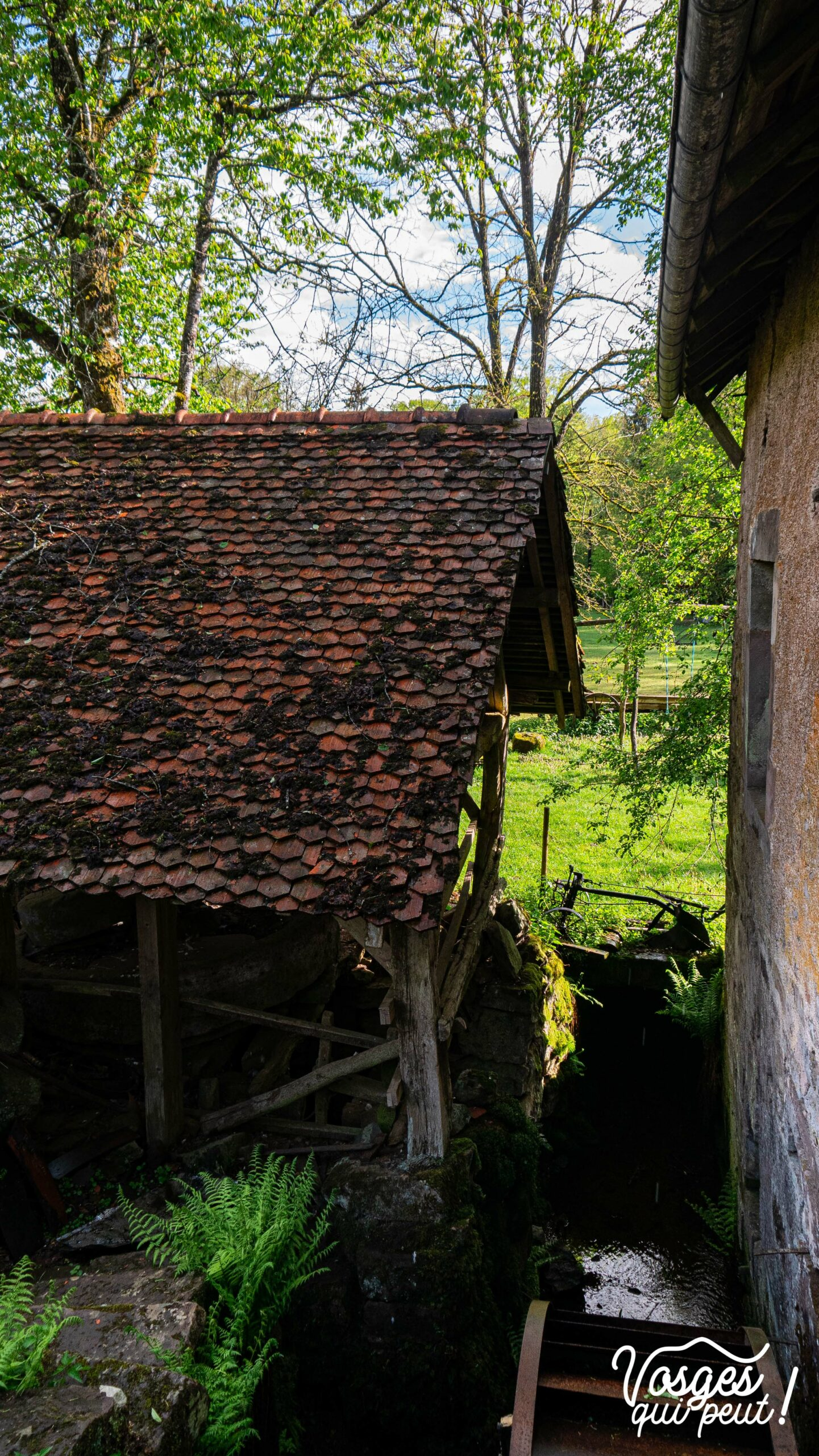 Le moulin de Bégeot au plateau des Mille étangs