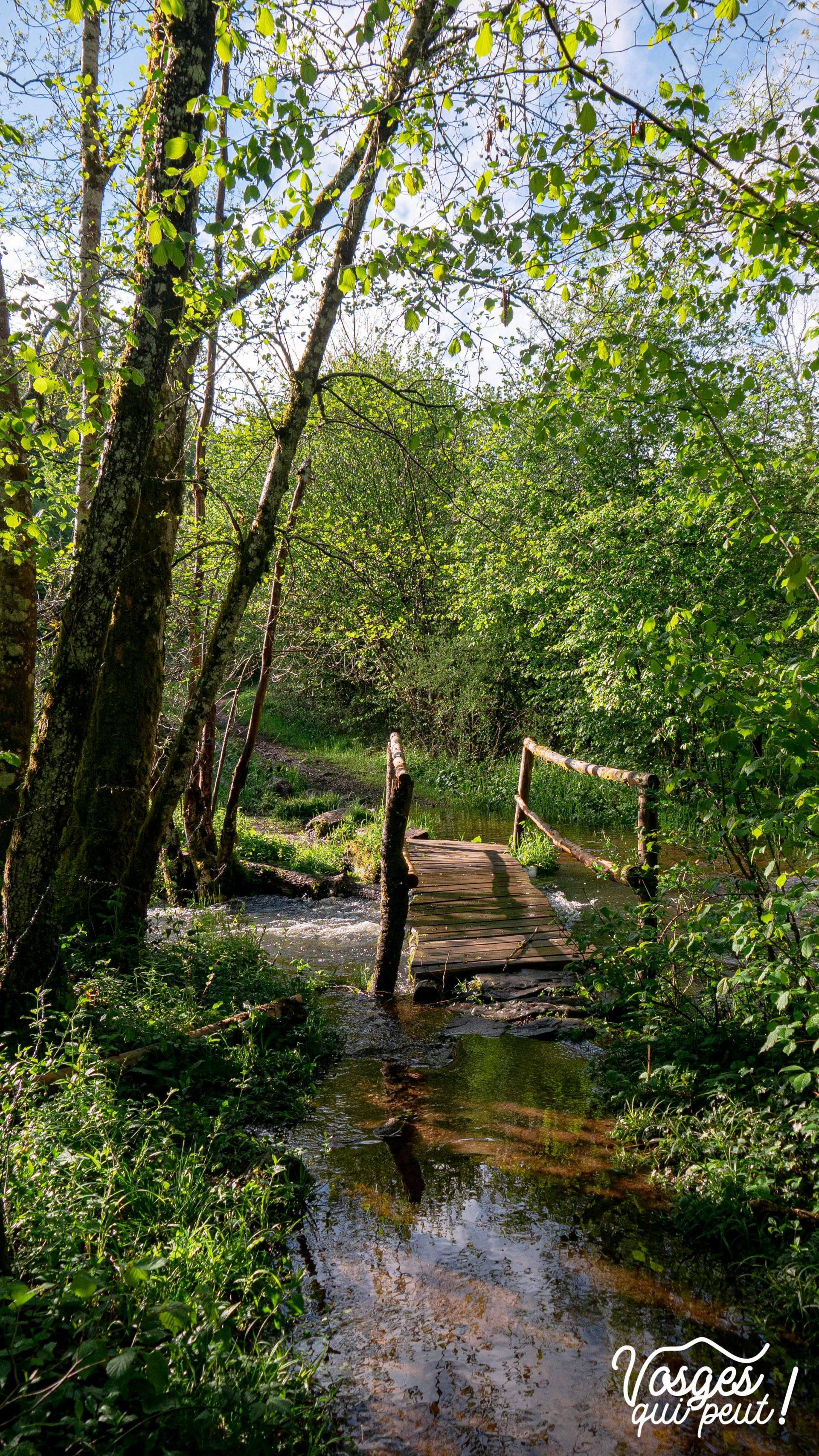 Pont de bois au-dessus d'une rivière au plateau des Mille Étangs