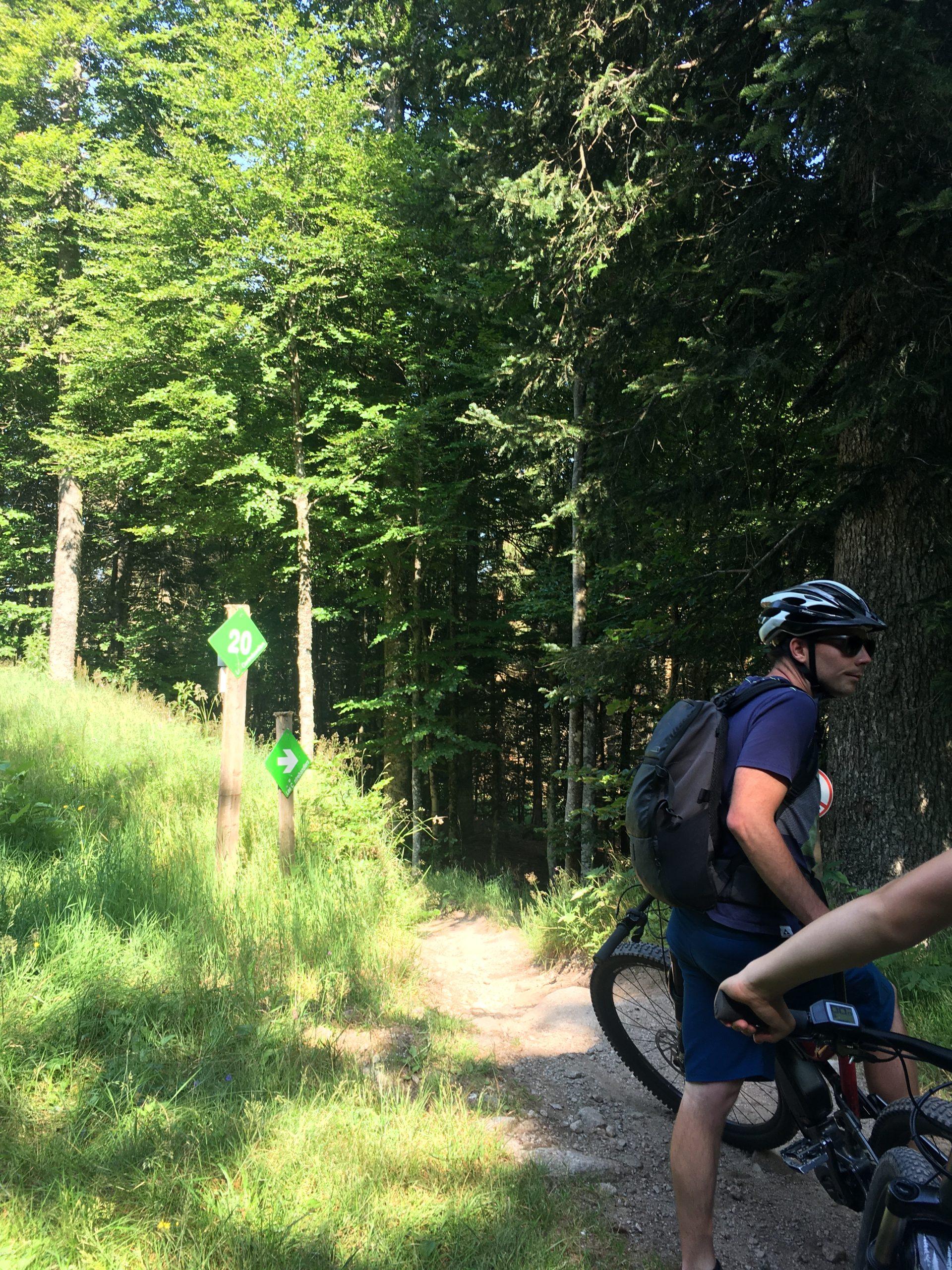 VTT à assistance électrique dans une forêt du Massif des Vosges