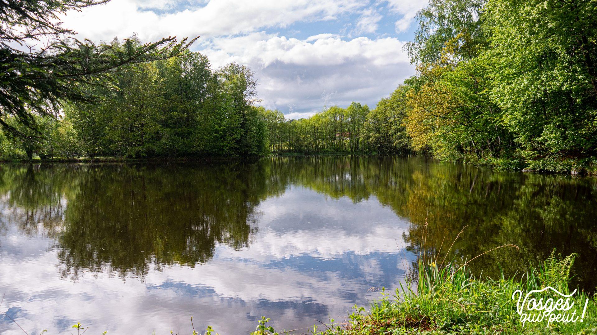 Lac aux mille étangs