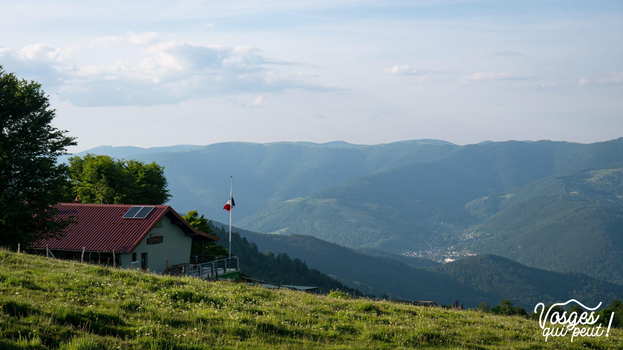Vue des crêtes du Massif des Vosges