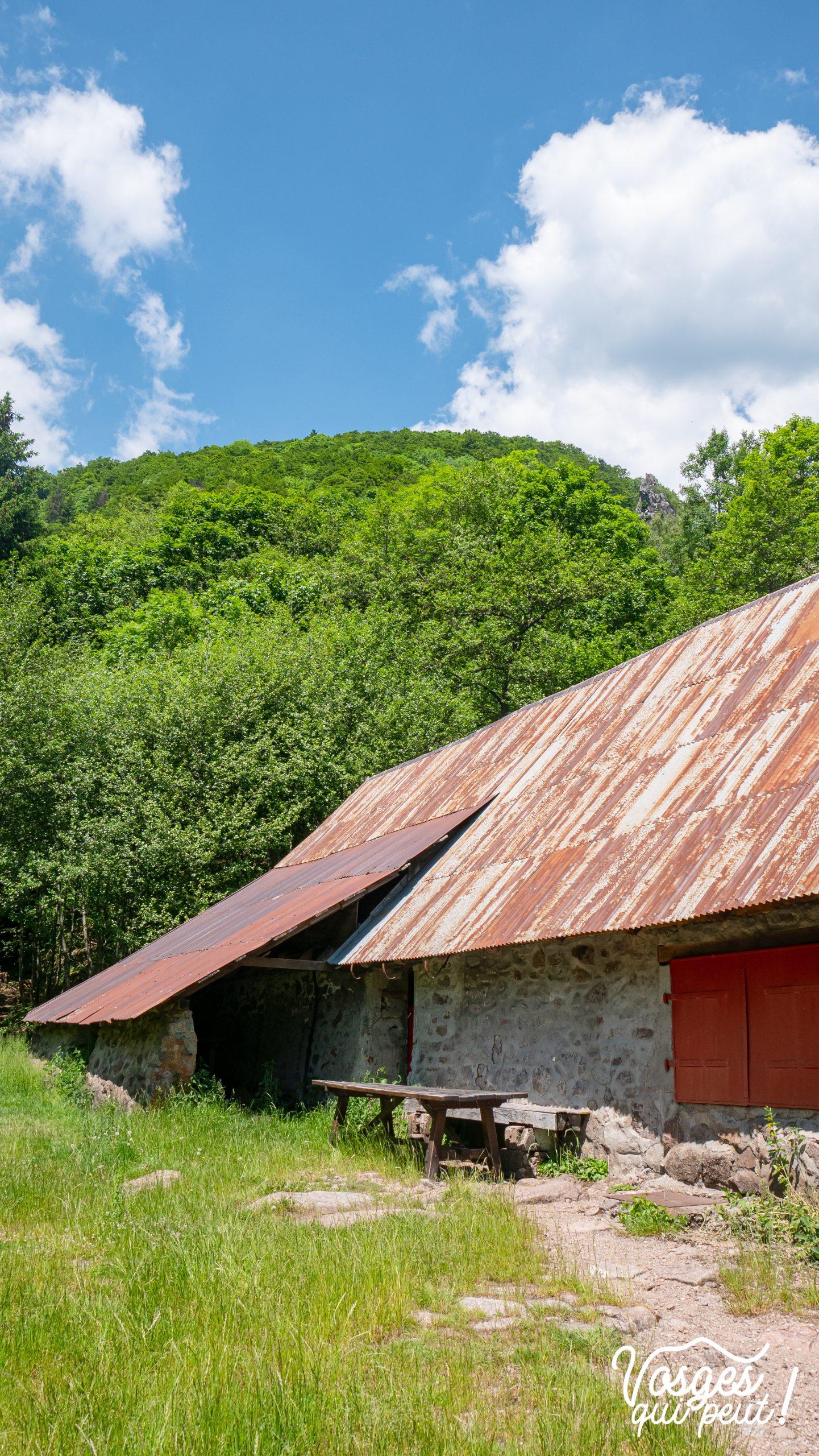 Ferme de la Basse Bers dans le Massif des Vosges