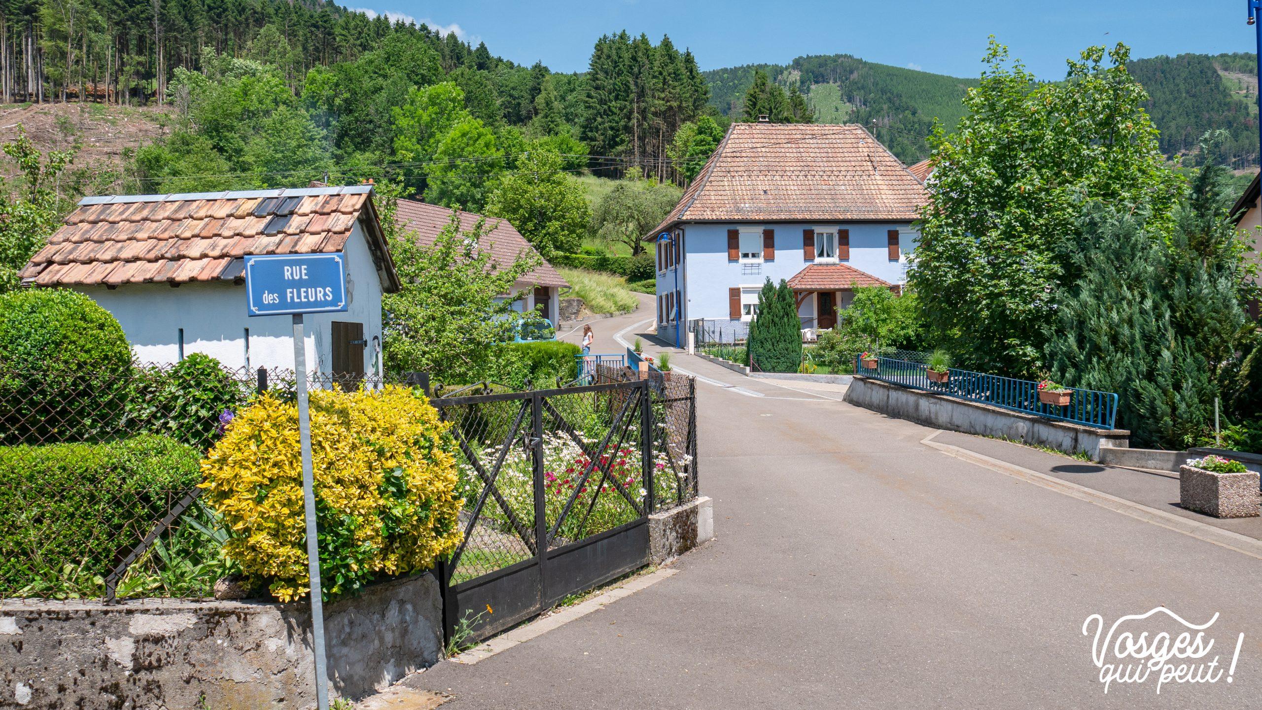 Rimbach-près-Masevaux dans le Massif des Vosges