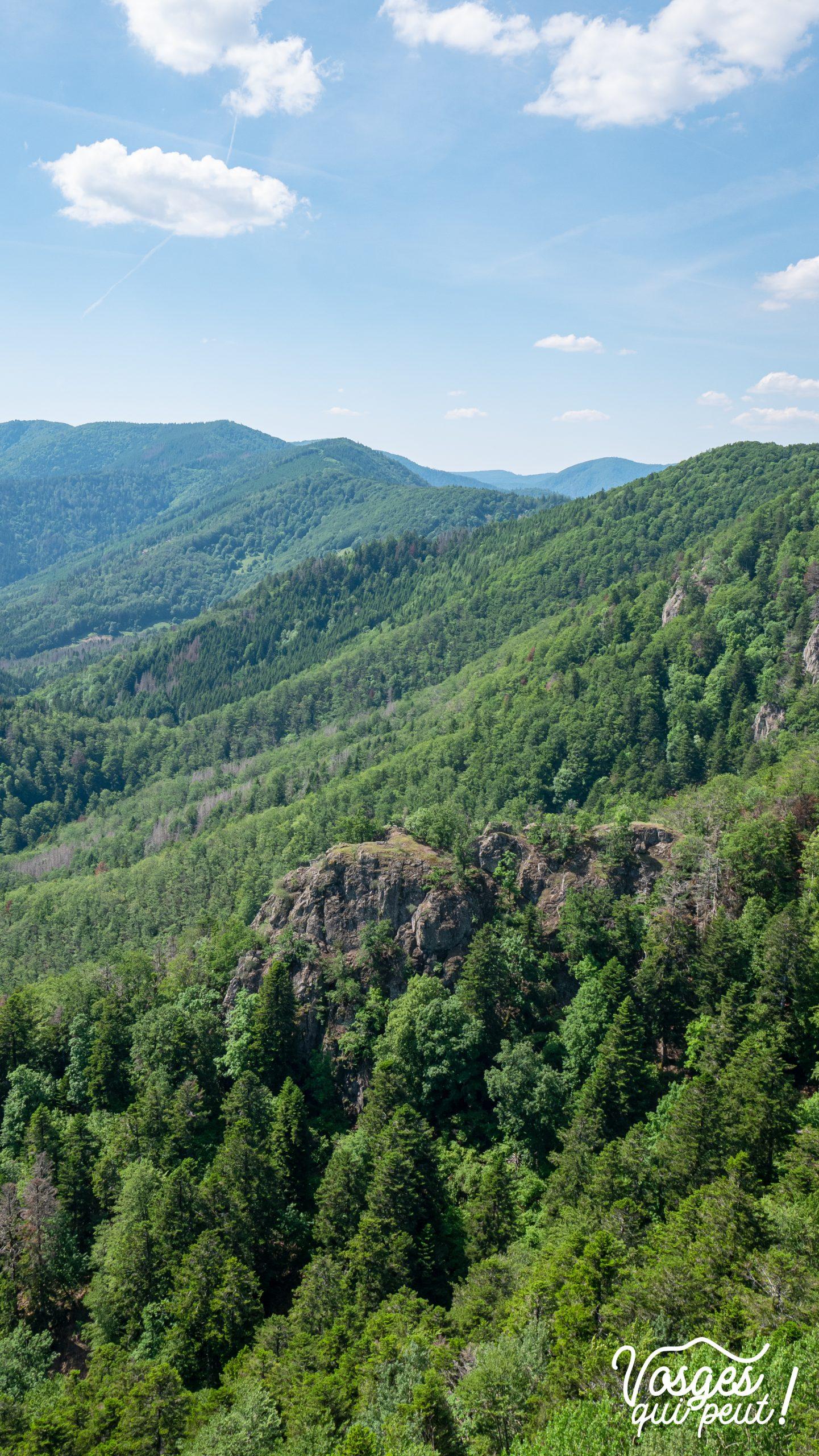Vue sur le Duerenfels dans le Massif des Vosges