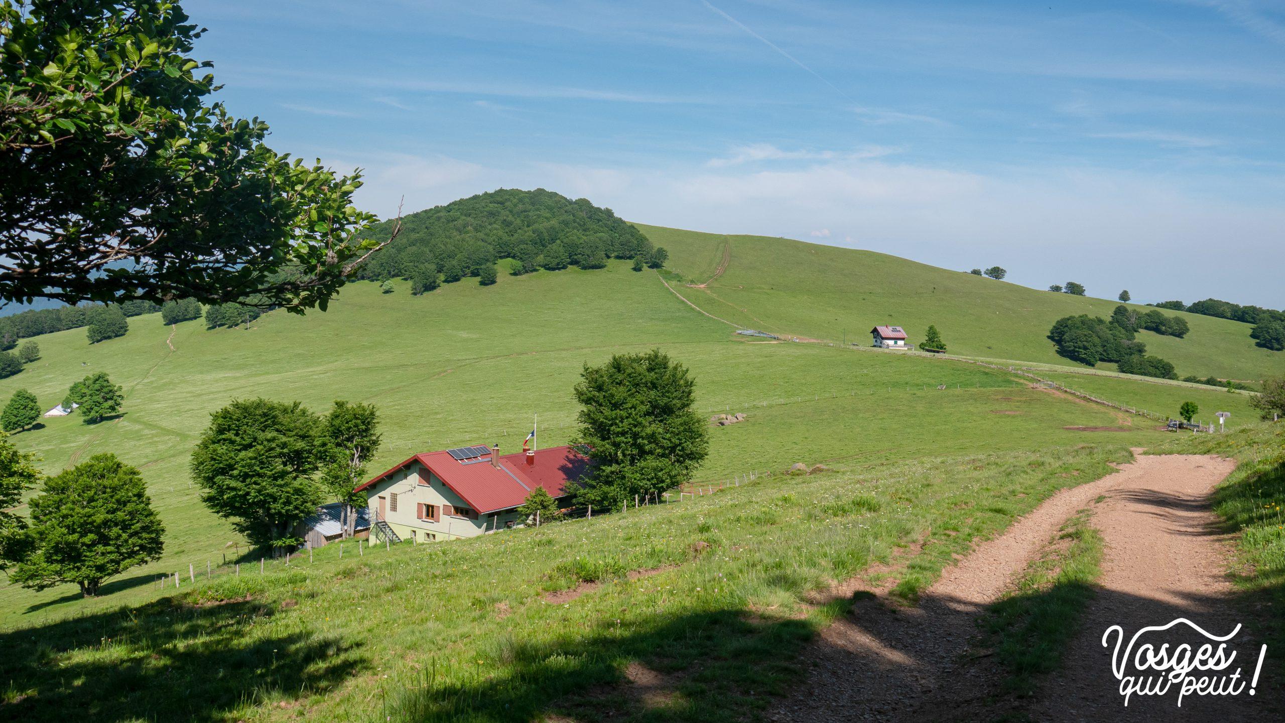 Vue sur le refuge du Rossberg dans le Massif des Vosges