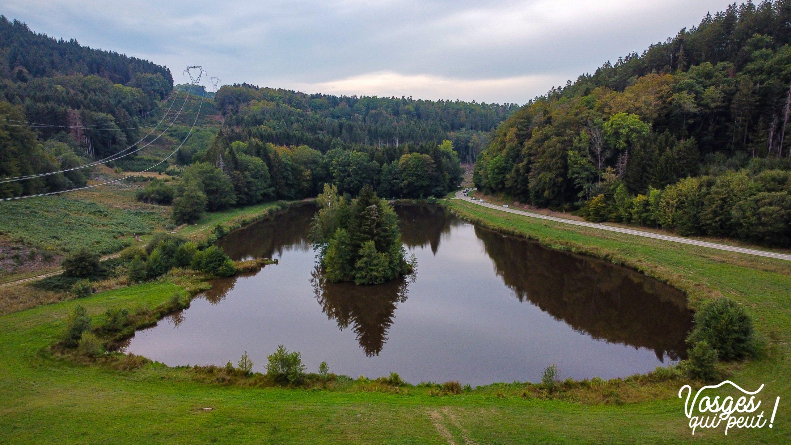 Vue aérienne sur le col de Steige et son étang dans les Vosges