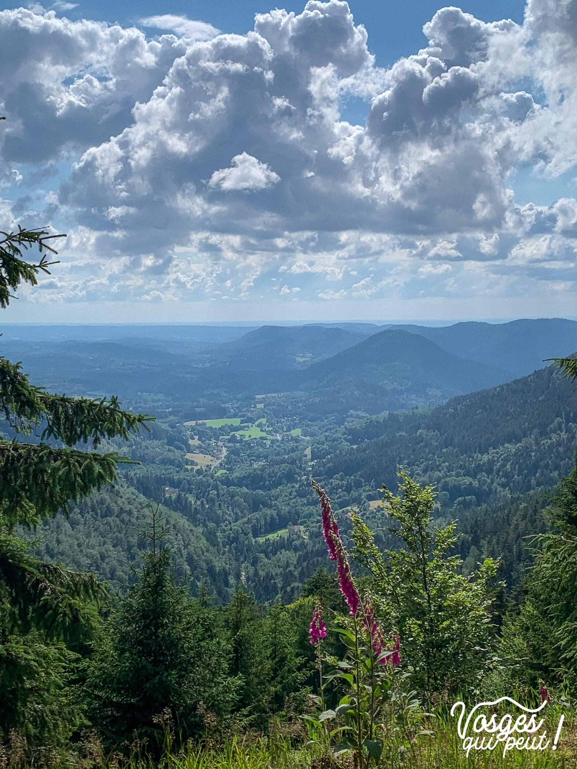 Vue sur le val de Senones dans le Massif des Vosges