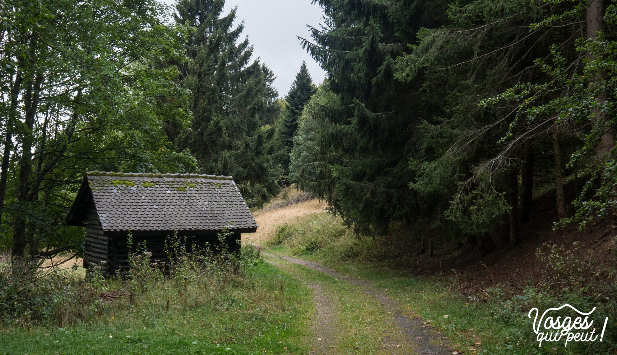 Un abri pour randonneurs dans le Massif des Vosges